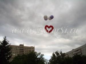 Огромное сердце - одно на двоих!