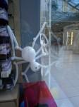 паук в витрине