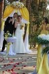 желтый галстук на лимонной свадьбе